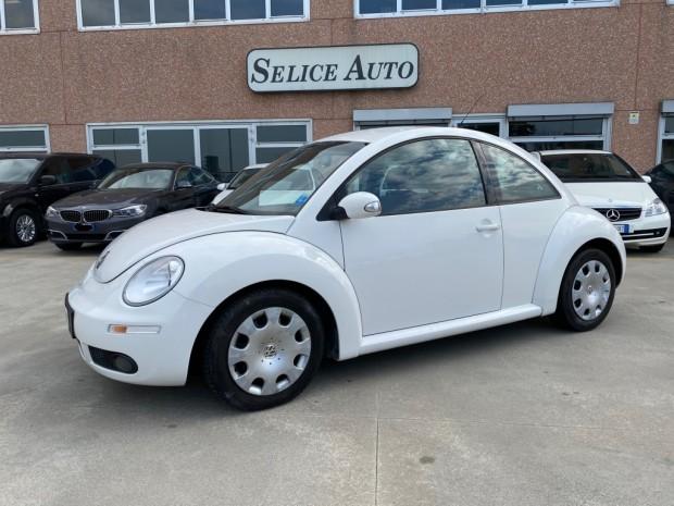 New beetle (11)